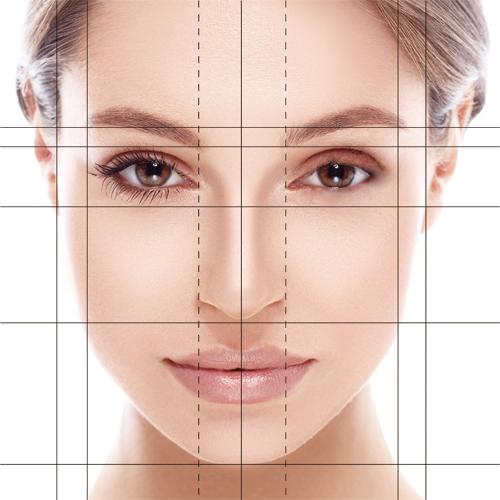 矯正による美容効果の顔貌黄金比